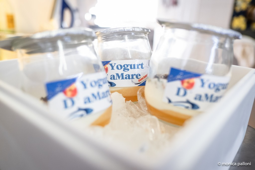 Yogurt d' AMare gusto saturnico